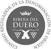 Tinto Burgos – Un vino tinto diferente